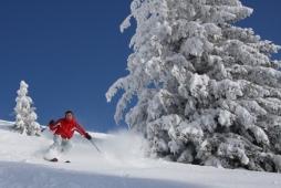 Winterlandschaft Skifahrer Sport verschneite Landschaft Berge Abfahrt